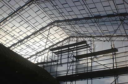 View underneath a monoflex sheeted beamed independent scaffold for a temporary roof at Roxwell, Chelmsford.